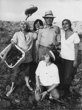 Harvest Time Poster 1983 (France)