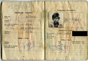Pasaportes de José y de su hermano, Antonio